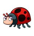 ladybug with sleepy eyes vector image vector image