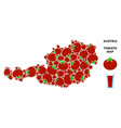 austria map composition of tomato vector image vector image