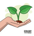ecology green world hand with sprout plant design vector image