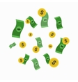 Money and Golden Coin Rain vector image vector image