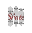 skateboard design set vector image