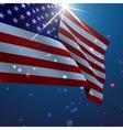 USA American flag vector image