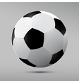 Football Black and White Ball vector image