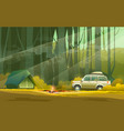 camp and car in forest vector image vector image