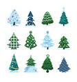 christmas fir collection conifers decorated vector image vector image