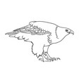 eagle line art 09 vector image vector image