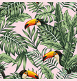 green jungle with toucan pink background vector image vector image