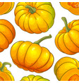 pumpkin fruit pattern on white background vector image