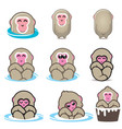 snow monkeys or japanese macaque vol 1 vector image vector image