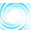 Swirl abstract vector image vector image