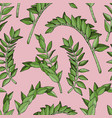 abstract seamless pattern with tropical plant vector image