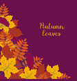 autumn floral background with colorful vector image vector image