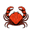 crab in engraving style isolated on white vector image vector image