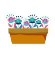 cute houseplant floral decoration vector image