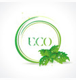 eco symbol with green leaves icon vector image vector image