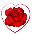 flower love vector image vector image