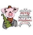 funny pig with xmas tree greeting card vector image