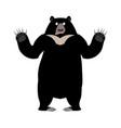 himalayan bear surprise emotion wonderl wild vector image