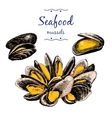 Seafood Mussels vector image vector image