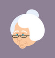grandmother portrait old woman face crone vector image vector image