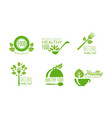 healthy natural product logos set green labels vector image