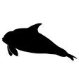 orca vector image vector image