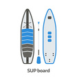 SUP Board and Paddle Set vector image vector image