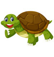 a turtle on white background vector image vector image