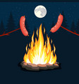 bonfire with grill sausage vector image