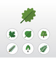 flat icon bio set of decoration tree spruce vector image vector image