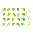 hand drawn plant clipart vector image