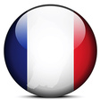 Map on flag button of French Guiana vector image vector image