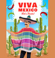 mexican man in sombrero and poncho viva mexico vector image vector image