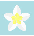 Plumeria Tropical flower icon Frangipani Hawaii vector image vector image