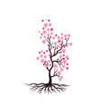 sakura beauty flower icon vector image