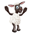 sheep cartoon character vector image vector image