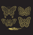 stylised golden butterflies on black background vector image