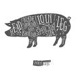 American cuts of pork scheme vector image vector image