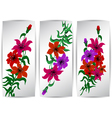 Banners with colorful flowers vector image vector image