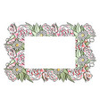 delicate frame of hand drawn roses and chamomiles vector image