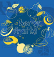 doodle fruit poster on bright blue background vector image vector image