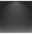 Metal Grill vector image