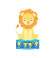 circus trained lion animal artist waiting