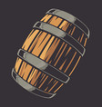 color beer barrel on a dark background vector image vector image