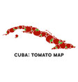 cuba map collage of tomato vector image vector image