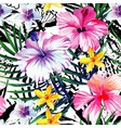 exotic tropical floral watercolor seamless vector image vector image