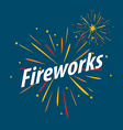 logo for traditional fireworks festival vector image vector image