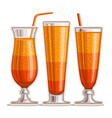 orange cocktails vector image vector image