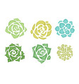 set of flat succulents with a top view on a white vector image vector image
