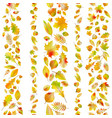 set of seamless borders from autumn leaves eps 10 vector image
